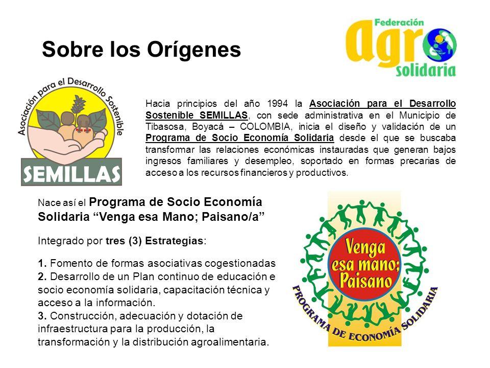 Sobre los Orígenes Hacia principios del año 1994 la Asociación para el Desarrollo Sostenible SEMILLAS, con sede administrativa en el Municipio de Tiba