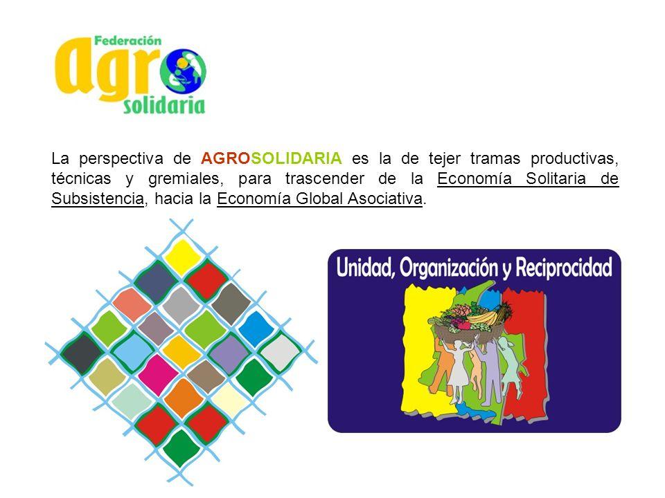 Shiitake Producción, transformación y Comercialización del Hongo Comestible y Medicinal SHIITAKE (lentinula edodes), a través de Grupos Asociativos de: Producción de semilla, producción de Incubados, Fructificación, deshidratación y distribución en las Seccionales de los Municipios de Sogamoso, Tibasosa, Duitama y en Bogotá D.C.