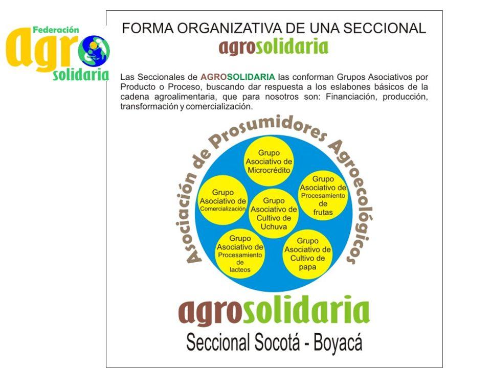 Leche de Vaca Acopio y procesamiento de leche de vaca a través de Grupos Asociativos en las Seccionales de los Municipios de Tota, Gámeza, Duitama y Chivatá – Boyacá.