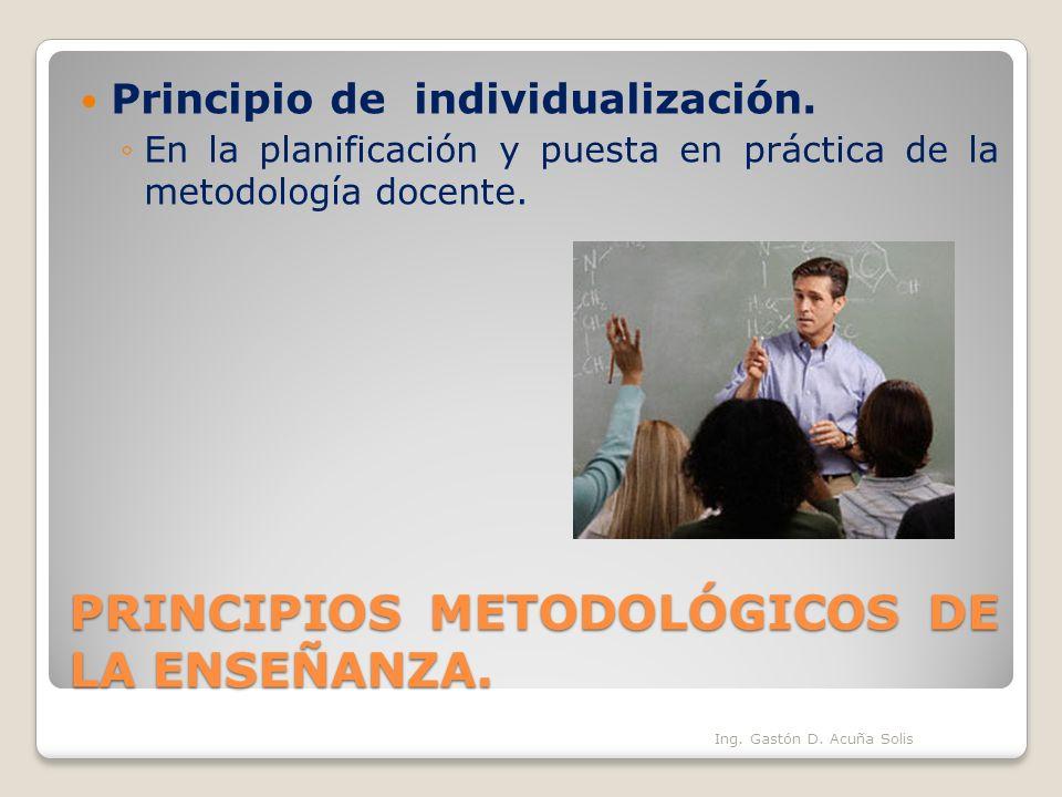 PRINCIPIOS METODOLÓGICOS DE LA ENSEÑANZA. Principio de individualización. En la planificación y puesta en práctica de la metodología docente. Ing. Gas