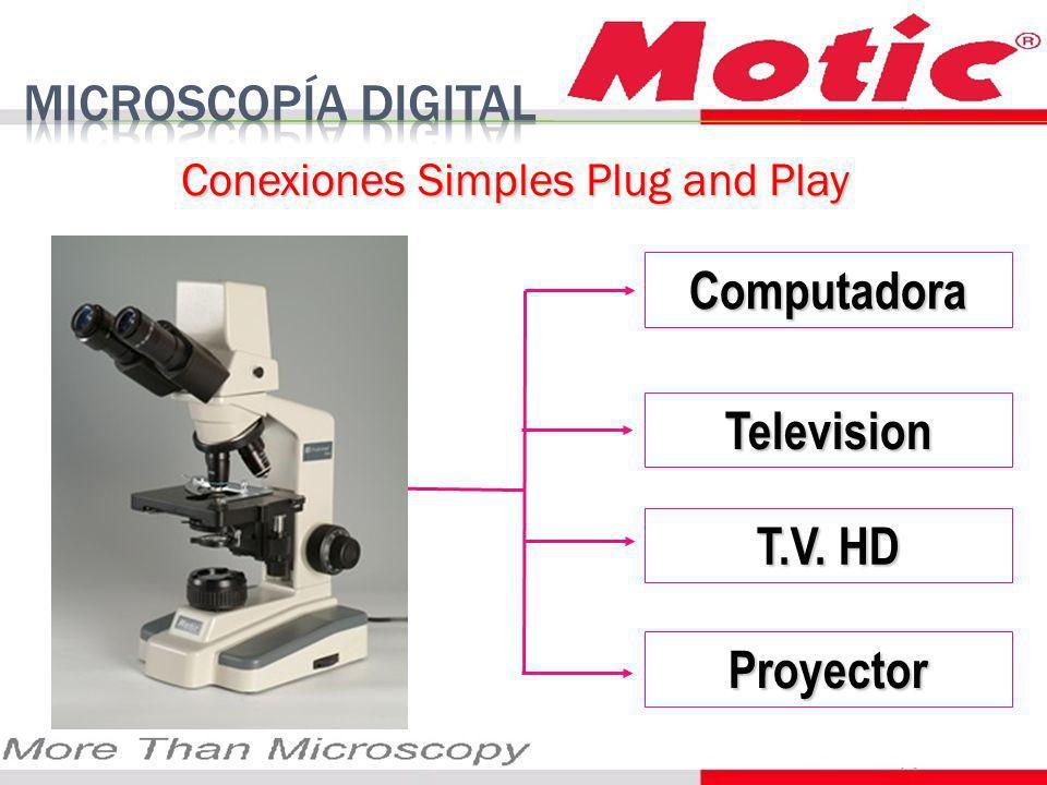 Conexiones Simples Plug and Play Computadora Television Proyector T.V. HD