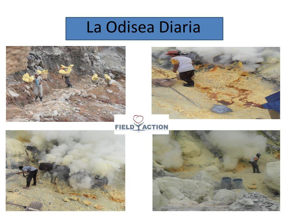 La Odisea Diaria