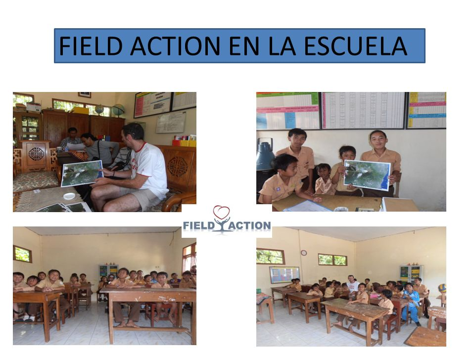 FIELD ACTION EN LA ESCUELA