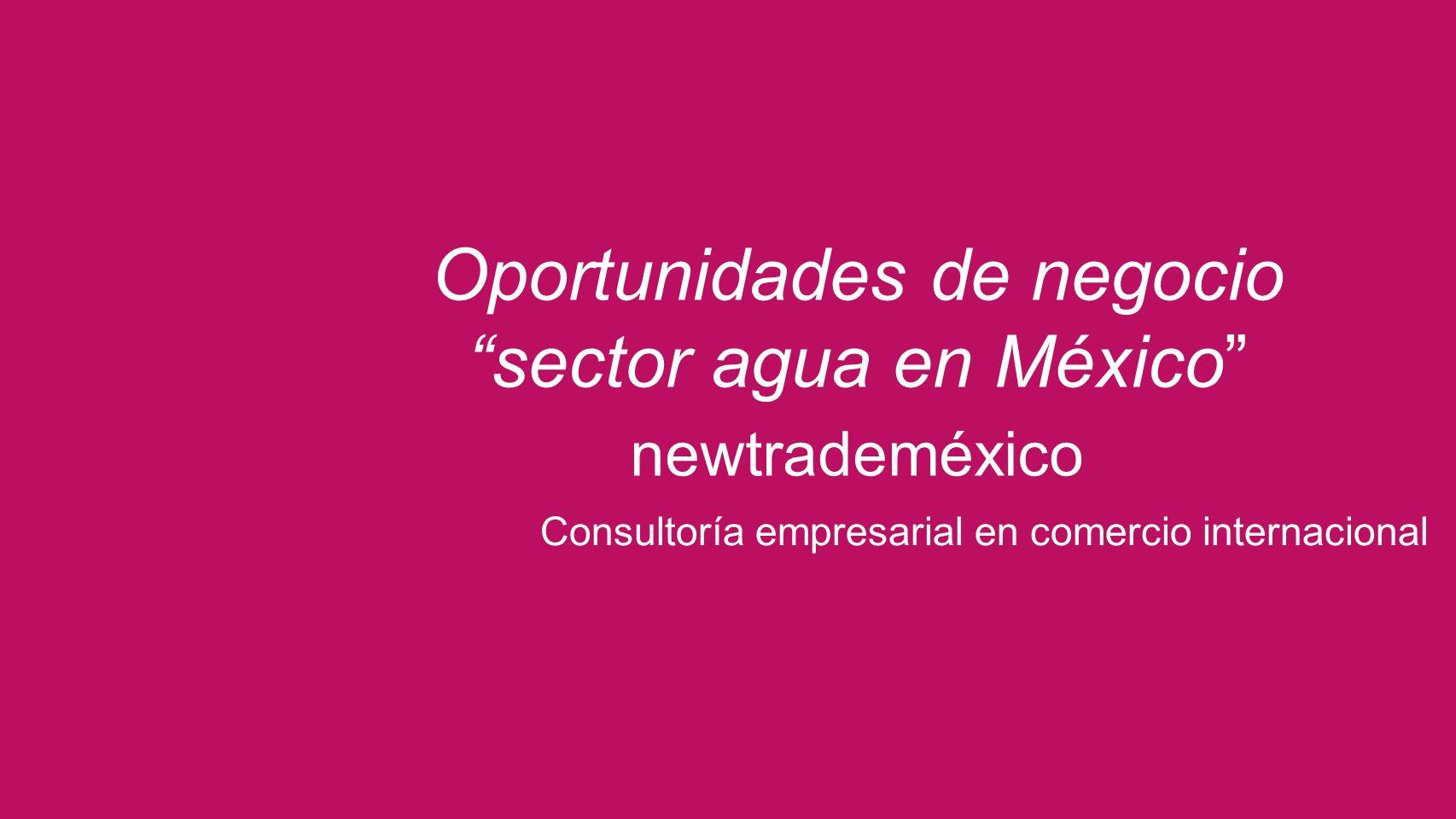 Consultoría empresarial en comercio internacional Oportunidades de negocio sector agua en México newtrademéxico