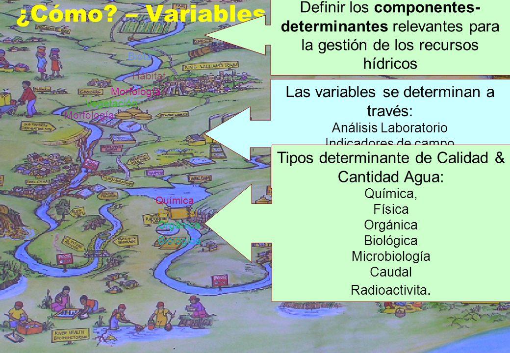 12 ¿Cómo? – Variables del Monitoreo Definir los componentes- determinantes relevantes para la gestión de los recursos hídricos Las variables se determ