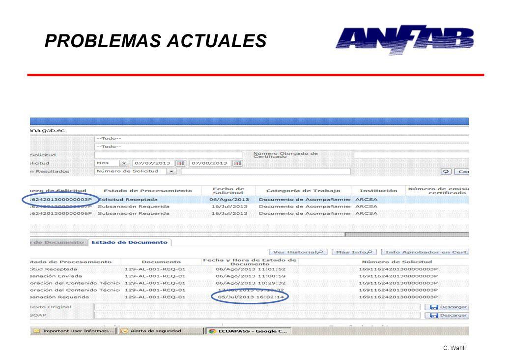C. Wahli PROBLEMAS ACTUALES TIEMPOS DE RESPUESTA
