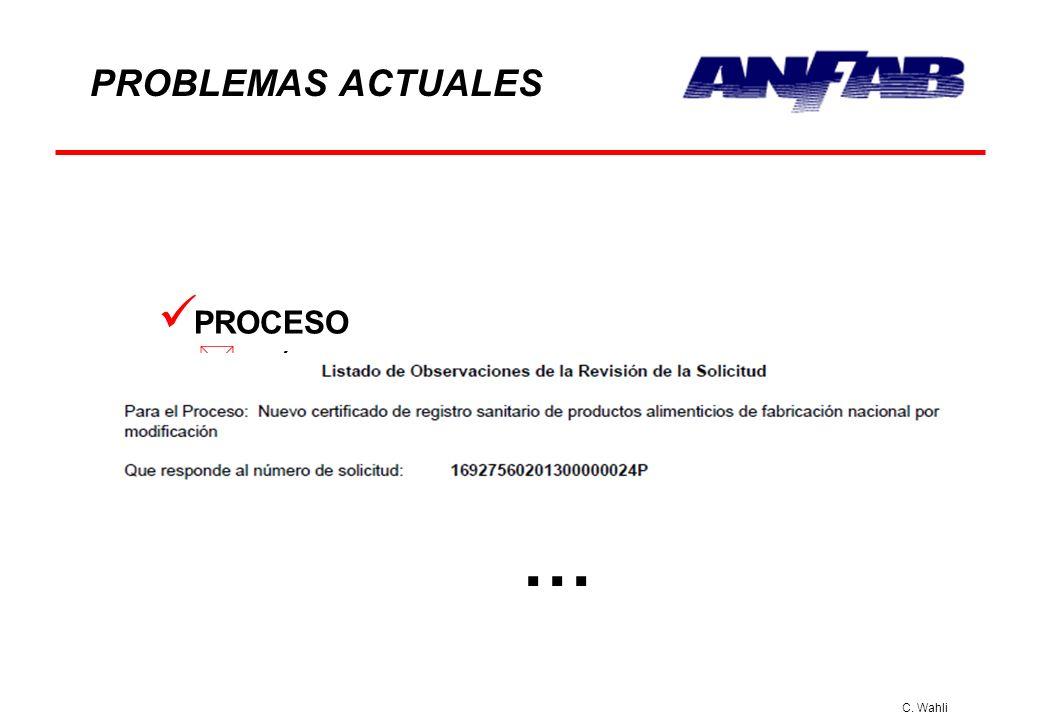 C. Wahli PROBLEMAS ACTUALES PROCESO * Envían informes de subsanaciones requeridas erróneamente y sin ninguna observación; esto después de haber subsan