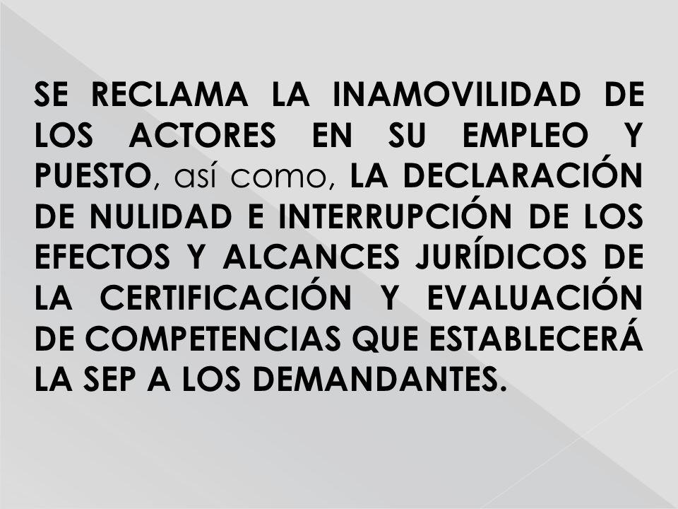 SE RECLAMA LA INAMOVILIDAD DE LOS ACTORES EN SU EMPLEO Y PUESTO, así como, LA DECLARACIÓN DE NULIDAD E INTERRUPCIÓN DE LOS EFECTOS Y ALCANCES JURÍDICOS DE LA CERTIFICACIÓN Y EVALUACIÓN DE COMPETENCIAS QUE ESTABLECERÁ LA SEP A LOS DEMANDANTES.