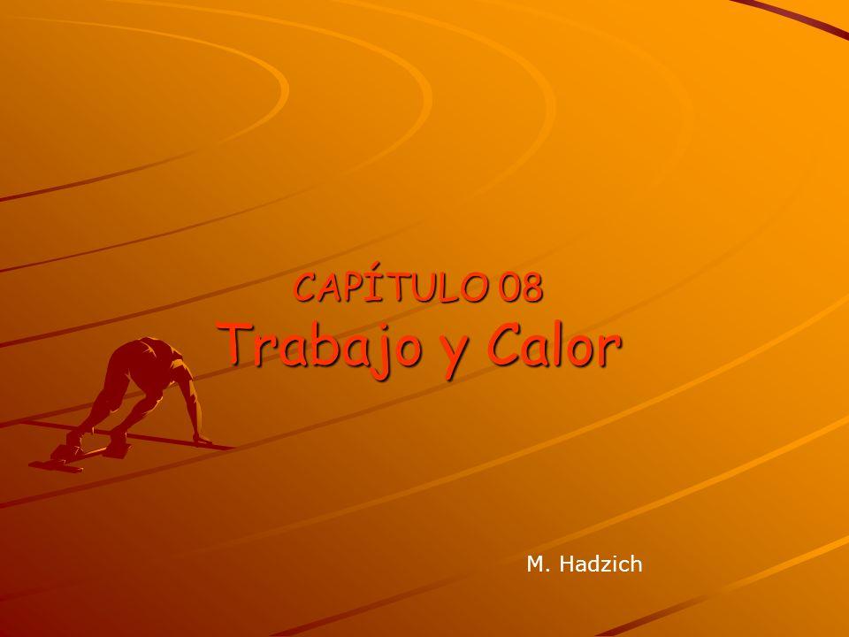 CAPÍTULO 08 Trabajo y Calor M. Hadzich