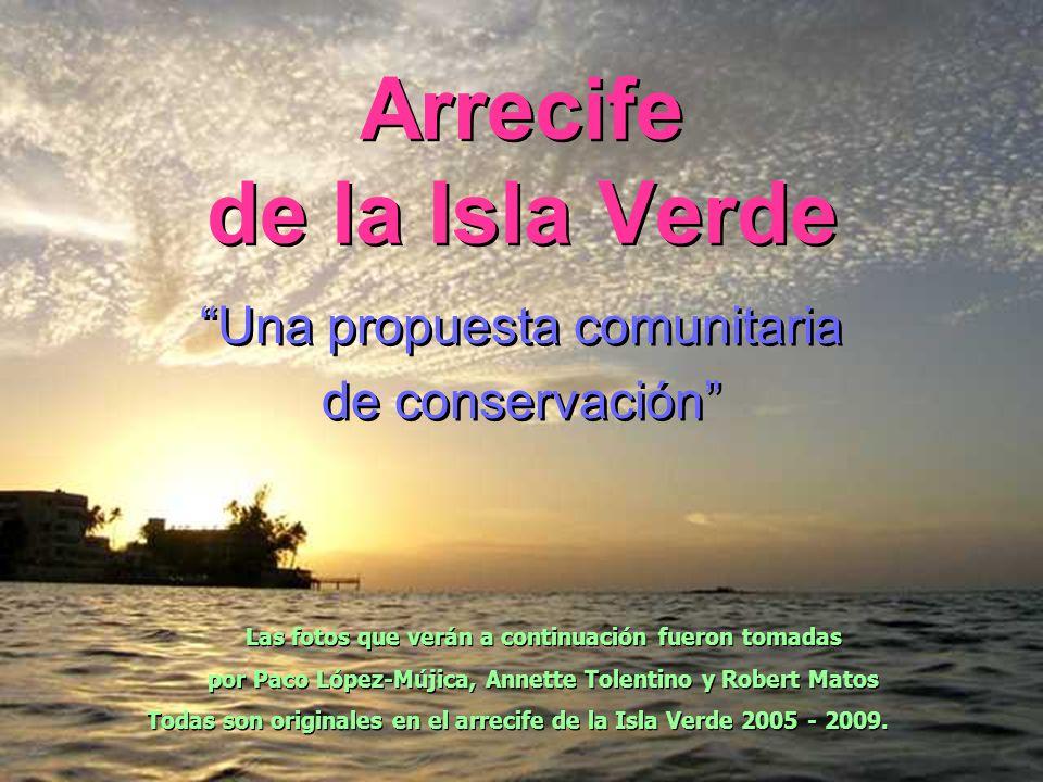 Arrecife de la Isla Verde Una propuesta comunitaria de conservación Una propuesta comunitaria de conservación Las fotos que verán a continuación fuero