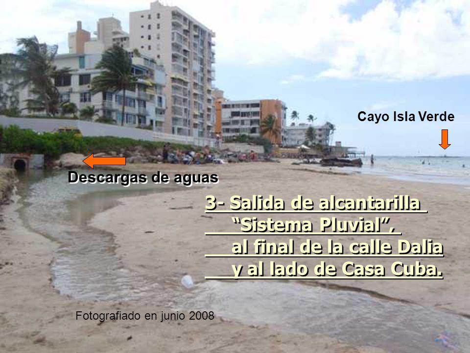 3- Salida de alcantarilla Sistema Pluvial, al final de la calle Dalia y al lado de Casa Cuba. 3- Salida de alcantarilla Sistema Pluvial, al final de l