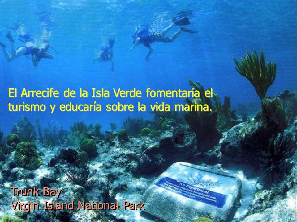 El Arrecife de la Isla Verde fomentaría el turismo y educaría sobre la vida marina. Trunk Bay Virgin Island National Park Trunk Bay Virgin Island Nati