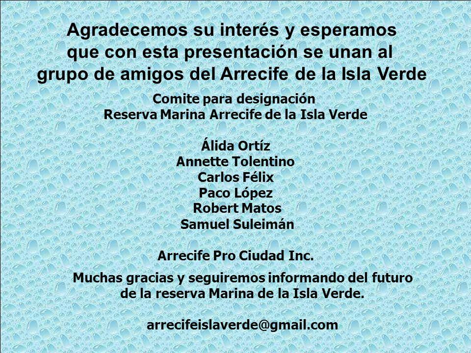 Comite para designación Reserva Marina Arrecife de la Isla Verde Álida Ortíz Annette Tolentino Carlos Félix Paco López Robert Matos Samuel Suleimán Ar