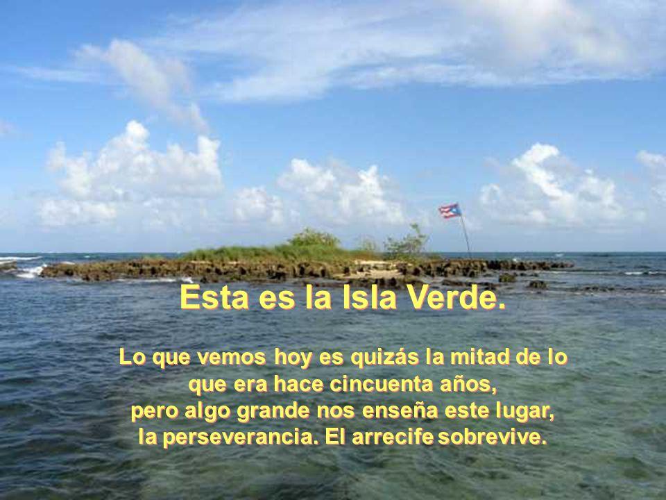 De la Isla Esta es la Isla Verde. Lo que vemos hoy es quizás la mitad de lo que era hace cincuenta años, pero algo grande nos enseña este lugar, la pe