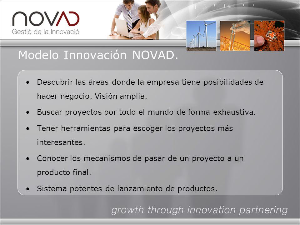 Modelo Innovación NOVAD. Descubrir las áreas donde la empresa tiene posibilidades de hacer negocio.