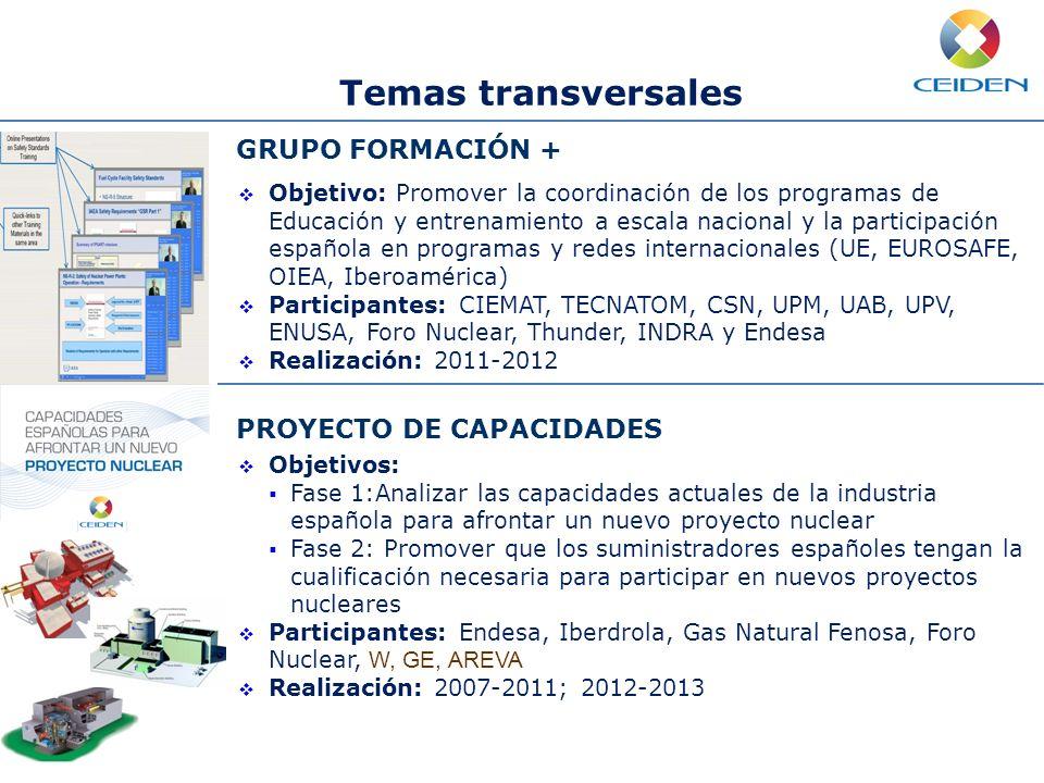 Mejora continua de la seguridad Mejora de la eficiencia Operación a largo plazo Nuevo desarrollos Temas transversales GRUPO FORMACIÓN + Objetivo: Prom