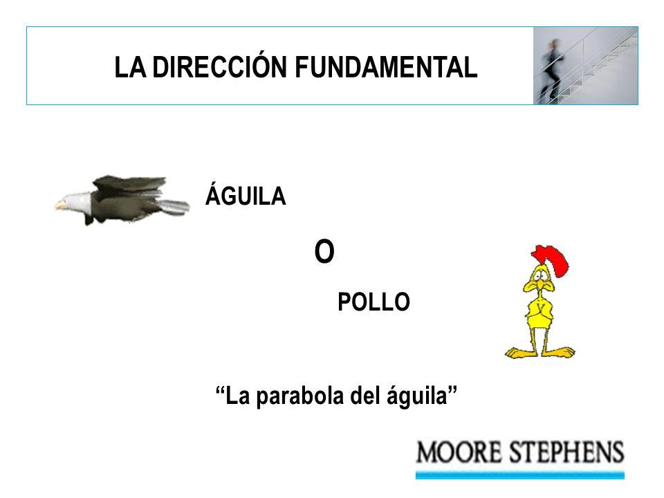 ÁGUILA O POLLO La parabola del águila LA DIRECCIÓN FUNDAMENTAL