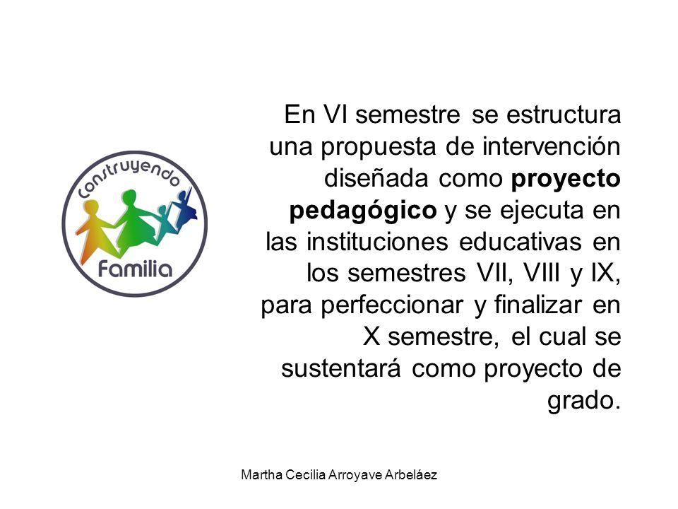 En VI semestre se estructura una propuesta de intervención diseñada como proyecto pedagógico y se ejecuta en las instituciones educativas en los semes