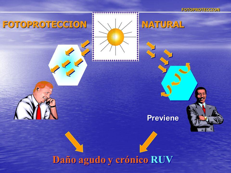 FOTOPROTECCION FOTOPROTECCIONNATURAL Daño agudo y crónico RUV Previene