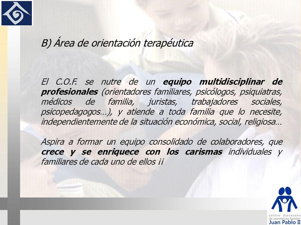 COF Orientadores familiares PsicólogosAbogados Trabajadores sociales Psiquiatra Psicopedagogo Médicos Monitores RNF Monitores AS
