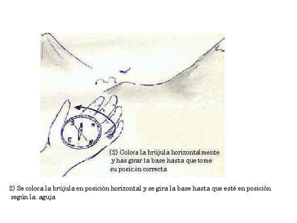 3) El Norte impreso en la base debe coincidir con el indicado por la aguja.