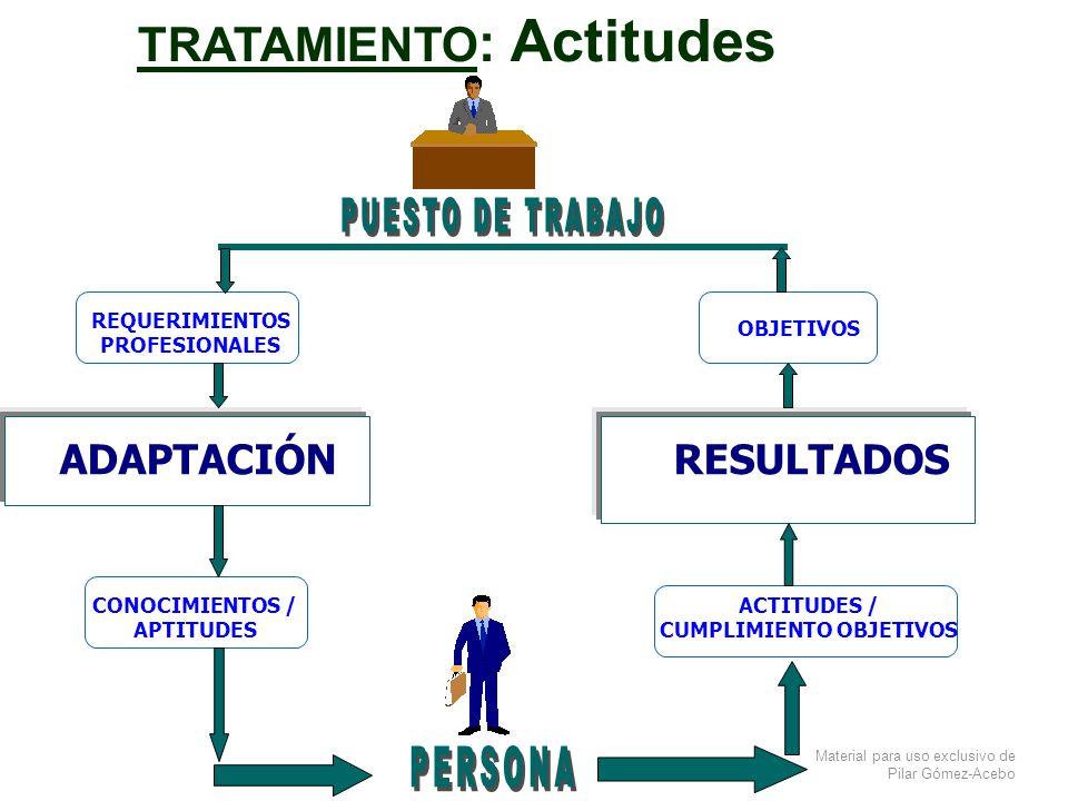 Material para uso exclusivo de Pilar Gómez-Acebo REQUERIMIENTOS PROFESIONALES RESULTADOSADAPTACIÓN OBJETIVOS CONOCIMIENTOS / APTITUDES ACTITUDES / CUM