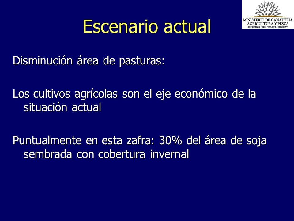 Disminución área de pasturas: Los cultivos agrícolas son el eje económico de la situación actual Puntualmente en esta zafra: 30% del área de soja semb