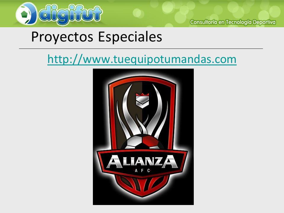 Proyectos Especiales http://www.tuequipotumandas.com