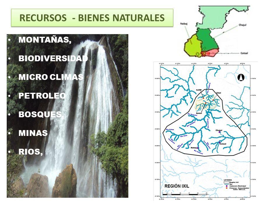 HISTORIA, asentados desde 500 años antes de Cristo ARQUEOLOGIA CULTURA IDIOMA ARTE COMUNIDAD Autoridad Maya Ancestral RIQUEZA CULTURAL MAYA