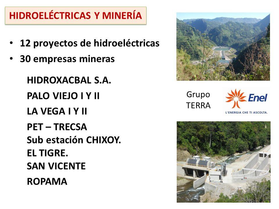 HIDROXACBAL S.A. PALO VIEJO I Y II LA VEGA I Y II PET – TRECSA Sub estación CHIXOY. EL TIGRE. SAN VICENTE ROPAMA 12 proyectos de hidroeléctricas 30 em
