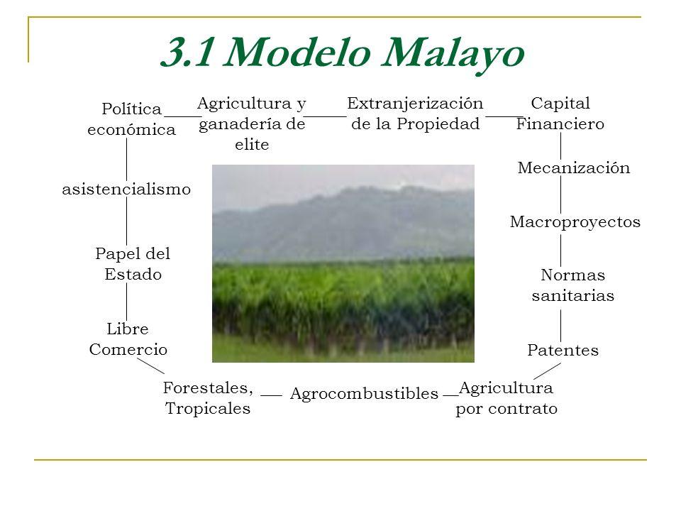 3.1 Modelo Malayo Agricultura y ganadería de elite Política económica Extranjerización de la Propiedad Capital Financiero Mecanización Macroproyectos