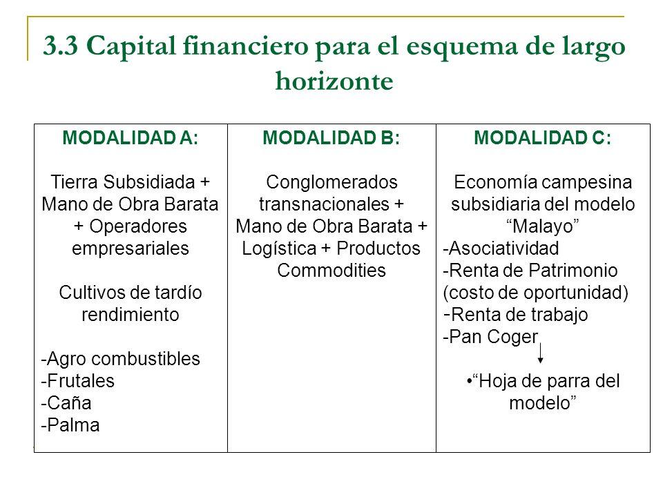 3.3 Capital financiero para el esquema de largo horizonte MODALIDAD A: Tierra Subsidiada + Mano de Obra Barata + Operadores empresariales Cultivos de