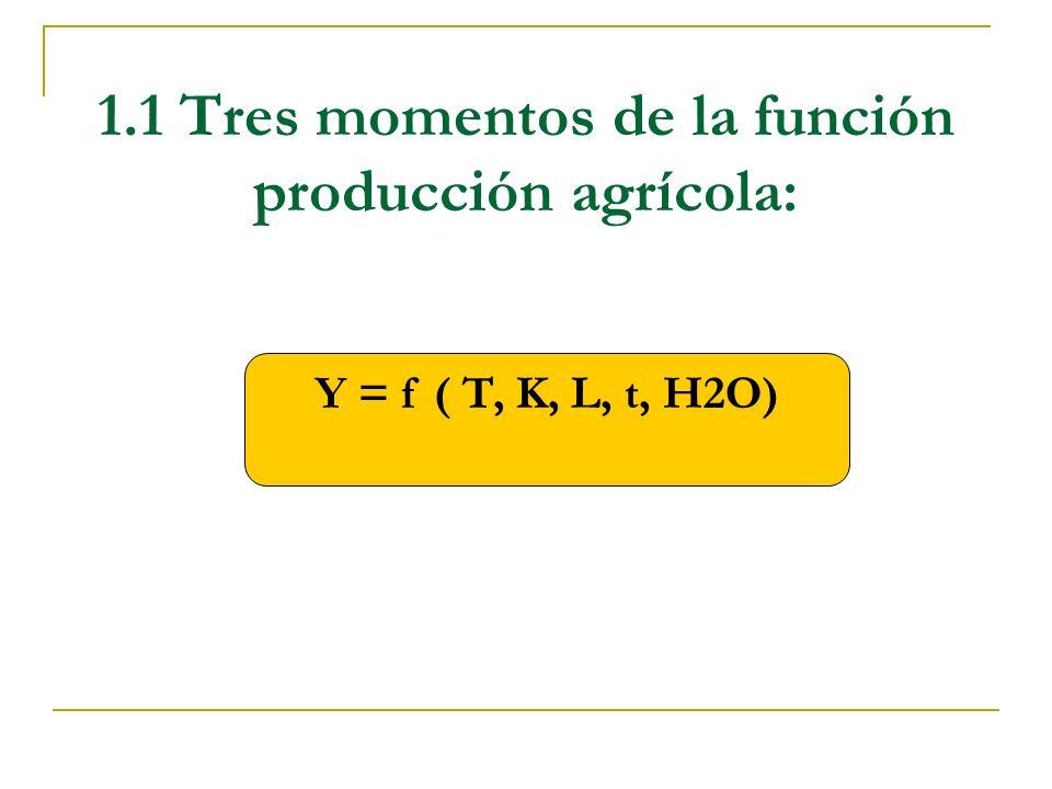 1.1 Tres momentos de la función producción agrícola: Y = f ( T, K, L, t, H2O)