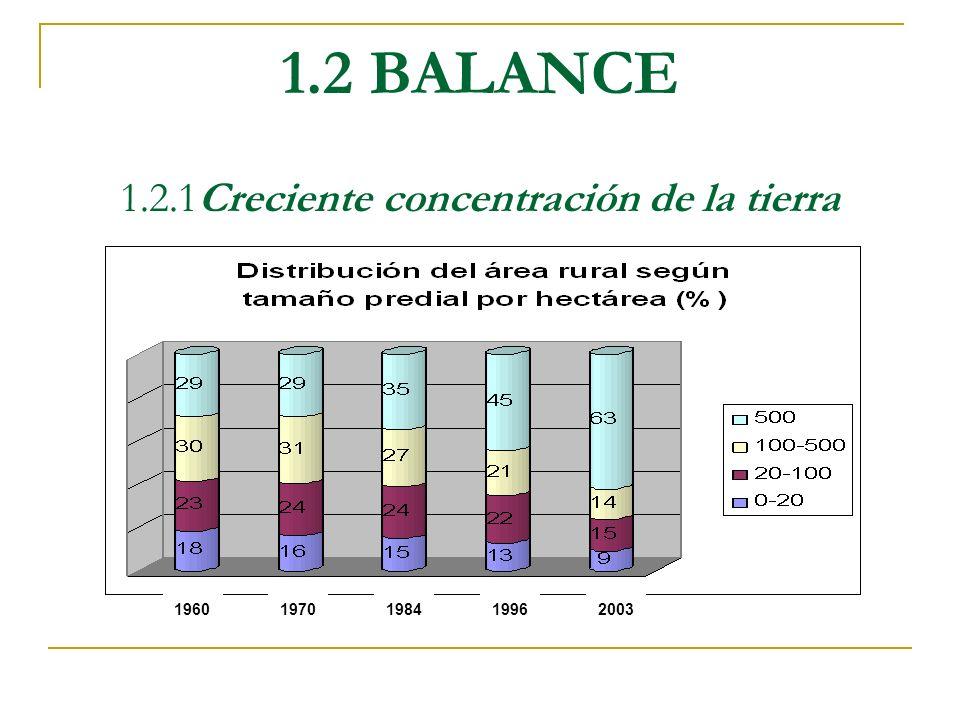 1.2 BALANCE 1.2.1Creciente concentración de la tierra 19601970198419962003