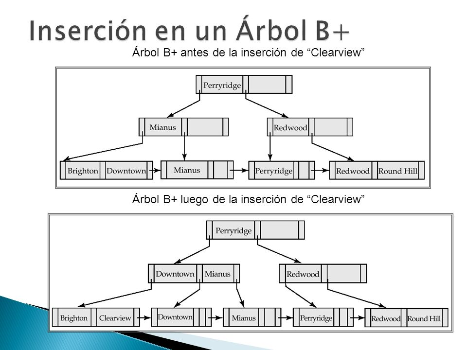 Árbol B+ luego de la inserción de Clearview Árbol B+ antes de la inserción de Clearview
