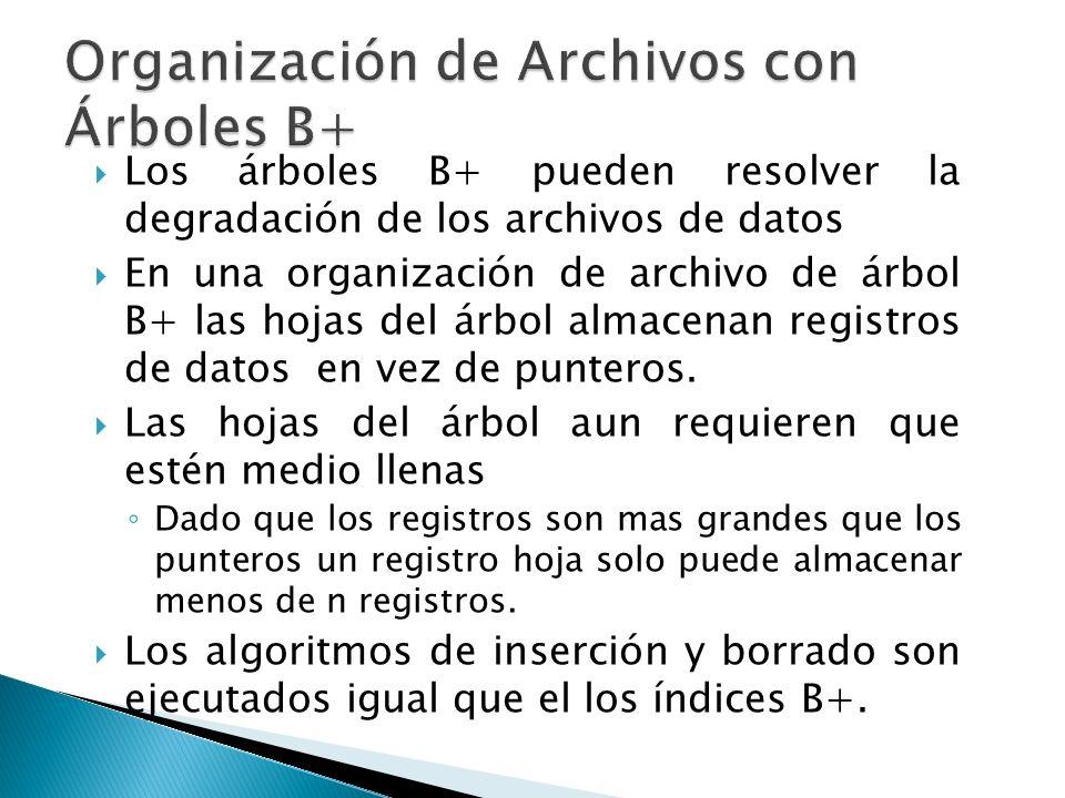 Los árboles B+ pueden resolver la degradación de los archivos de datos En una organización de archivo de árbol B+ las hojas del árbol almacenan regist