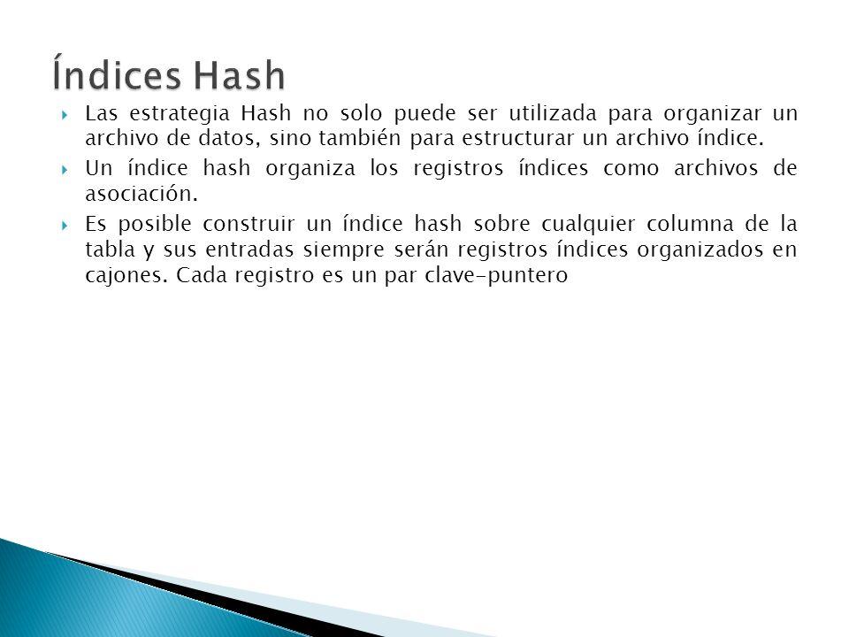 Las estrategia Hash no solo puede ser utilizada para organizar un archivo de datos, sino también para estructurar un archivo índice. Un índice hash or