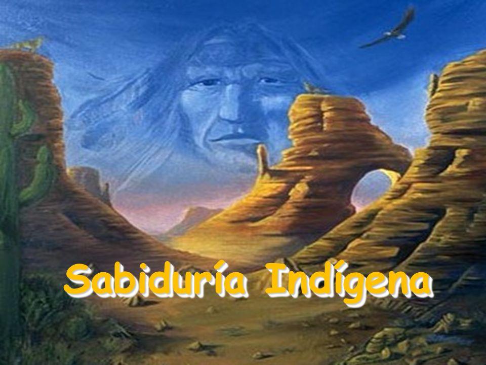 Un viejo cacique de una tribu estaba charlando con sus nietos, acerca de la vida.
