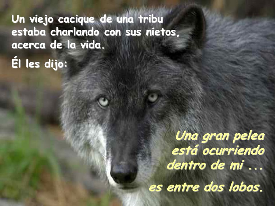 UNO de los lobos es … el resentimiento, la inferioridad, el miedo, la maldad, la avaricia, la mentira, el egoísmo, la envidia, el rencor, la culpa, el dolor, la ira,