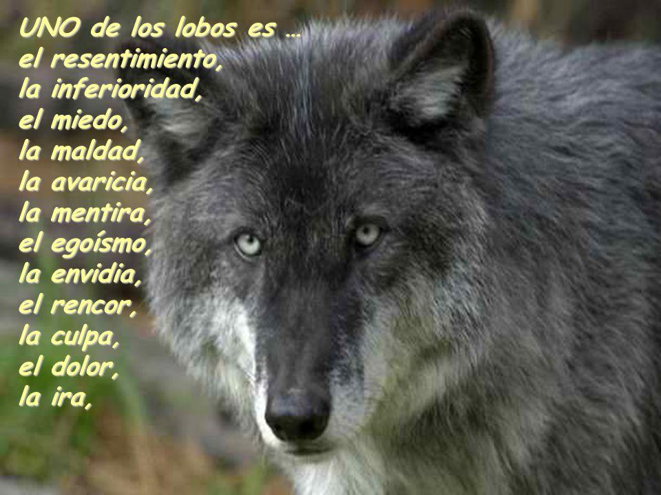 UNO de los lobos es … el resentimiento, la inferioridad, el miedo, la maldad, la avaricia, la mentira, el egoísmo, la envidia, el rencor, la culpa, el