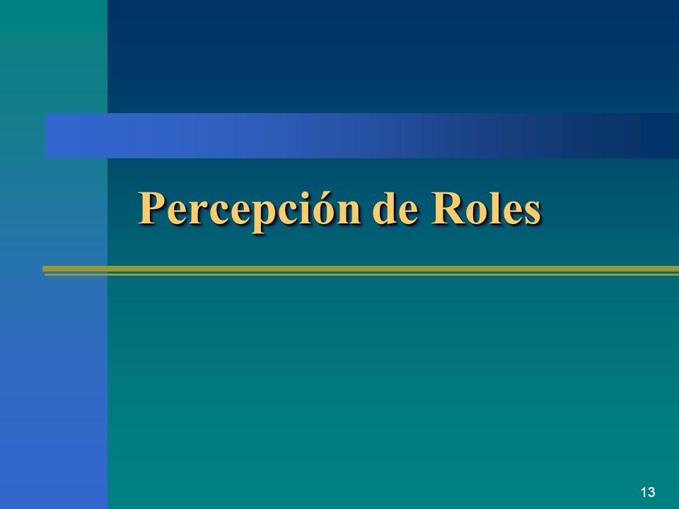 13 Percepción de Roles