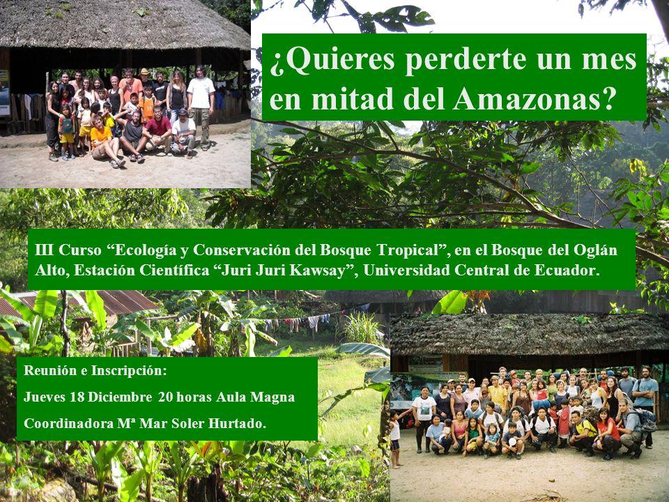 ¿Quieres perderte un mes en mitad del Amazonas? III Curso Ecología y Conservación del Bosque Tropical, en el Bosque del Oglán Alto, Estación Científic