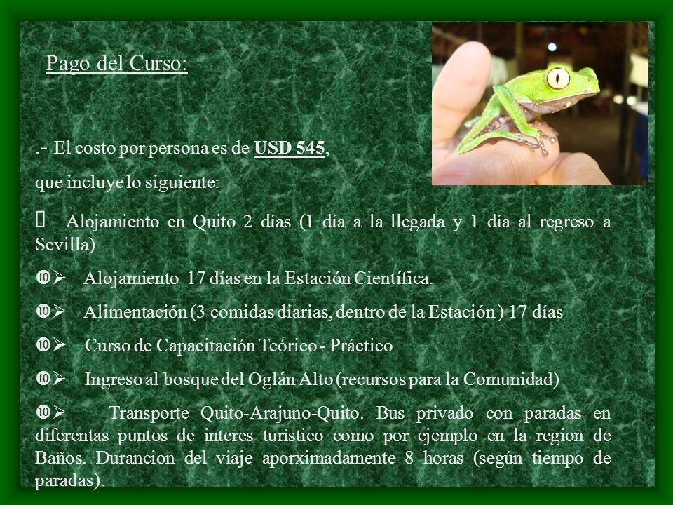 Pago del Curso:.- El costo por persona es de USD 545, que incluye lo siguiente: Alojamiento en Quito 2 días (1 día a la llegada y 1 día al regreso a S