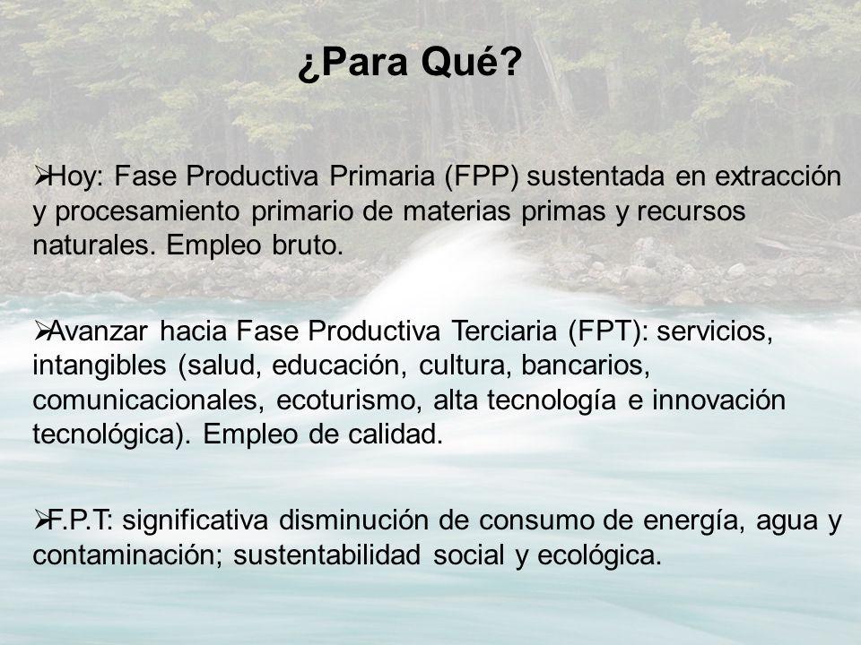 Hoy: Fase Productiva Primaria (FPP) sustentada en extracción y procesamiento primario de materias primas y recursos naturales. Empleo bruto. Avanzar h