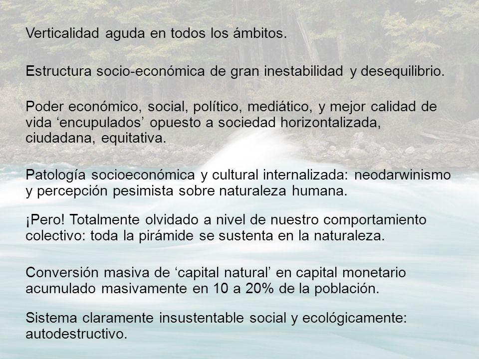 Verticalidad aguda en todos los ámbitos. Estructura socio-económica de gran inestabilidad y desequilibrio. Poder económico, social, político, mediátic