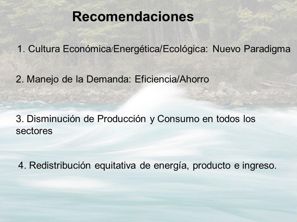 1.Cultura Económica / Energética/Ecológica: Nuevo Paradigma Recomendaciones 2. Manejo de la Demanda: Eficiencia/Ahorro 3. Disminución de Producción y