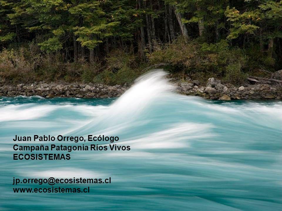 Juan Pablo Orrego, Ecólogo Campaña Patagonia Ríos Vivos ECOSISTEMAS jp.orrego@ecosistemas.cl www.ecosistemas.cl