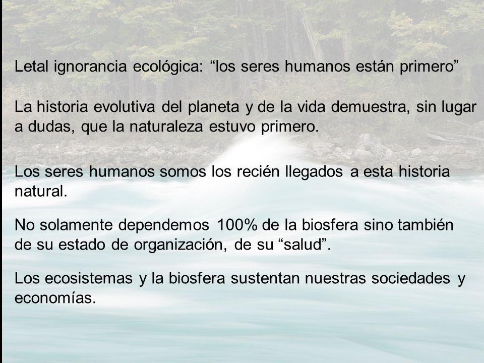 Letal ignorancia ecológica: los seres humanos están primero La historia evolutiva del planeta y de la vida demuestra, sin lugar a dudas, que la natura