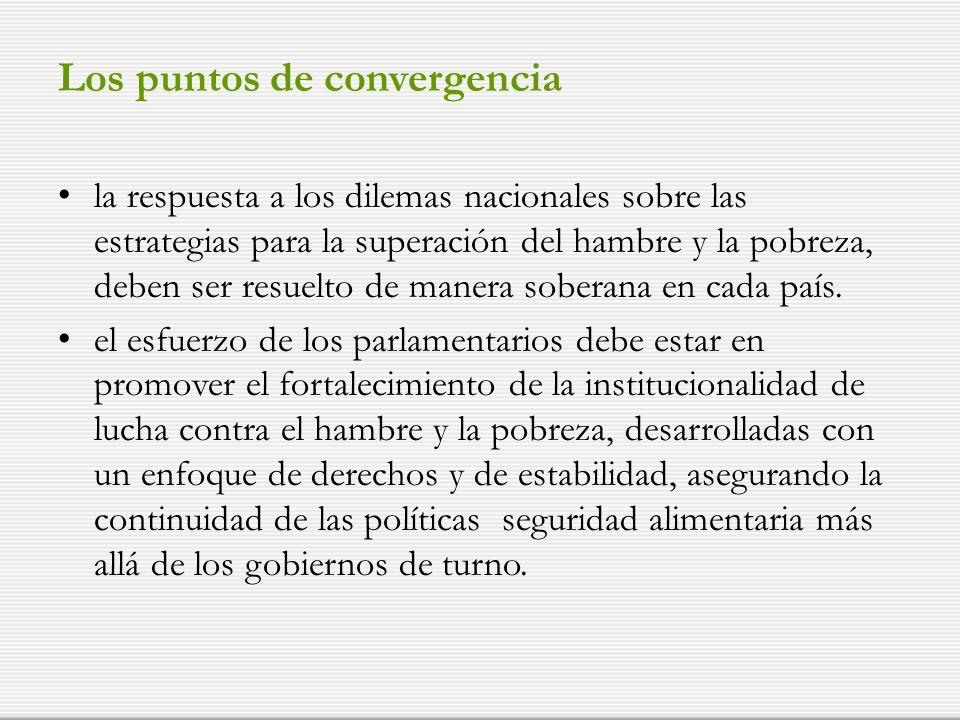 Los puntos de convergencia la respuesta a los dilemas nacionales sobre las estrategias para la superación del hambre y la pobreza, deben ser resuelto de manera soberana en cada país.