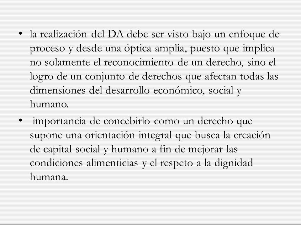 la realización del DA debe ser visto bajo un enfoque de proceso y desde una óptica amplia, puesto que implica no solamente el reconocimiento de un der